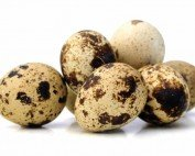 8 Reasons to Try Quail Eggs | Health & Nutrition | Gorilla Nutrition