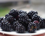 Nutrition Facts: Blackberries